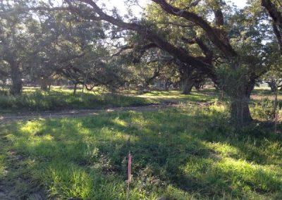 Little River Ranch 16