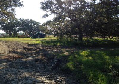 Little River Ranch 17